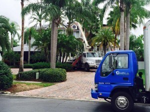 pest control services pinellas