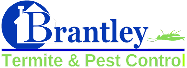 pest control company  pinellas