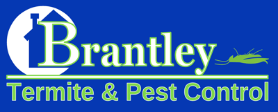 Pest Services, Rodent Control, Fumigation, Lawn & Ornamental